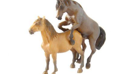 Model Art Rosdorf: Zuchtpferde