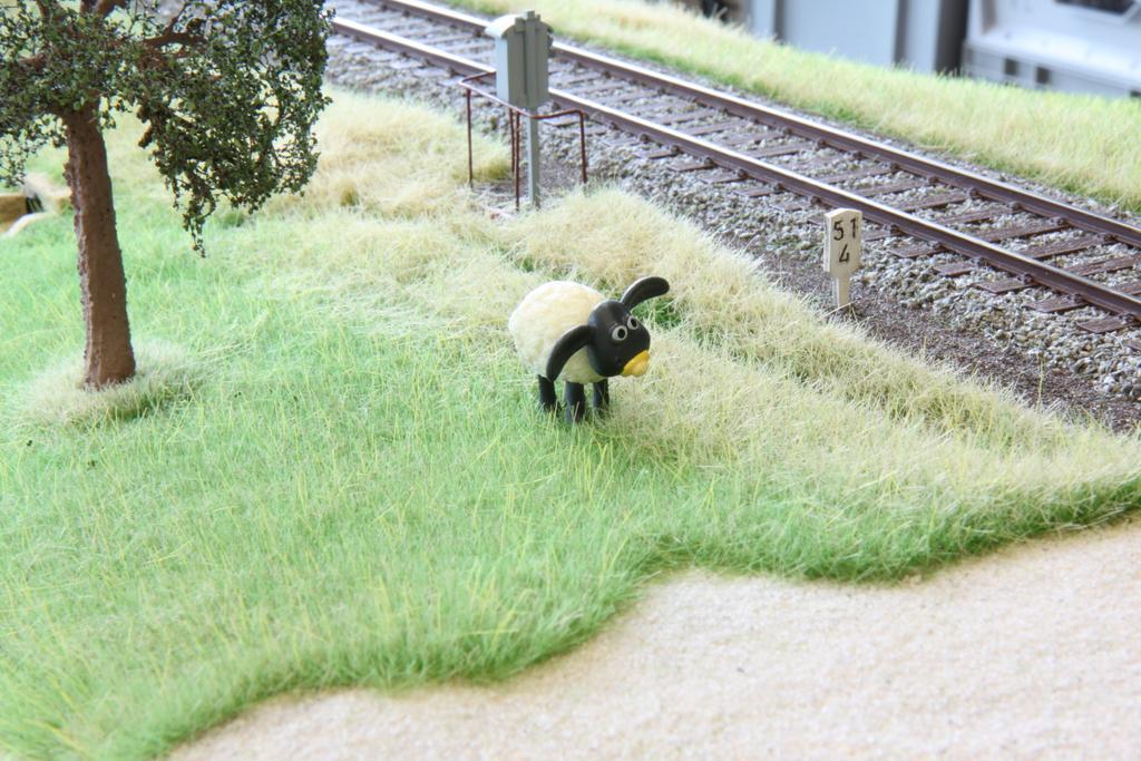 SSS2016__05_Man sorgt schon dafür, dass das Gras nicht zu hoch wird