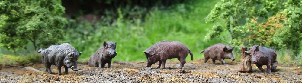 Hauser Wildschweinrotte