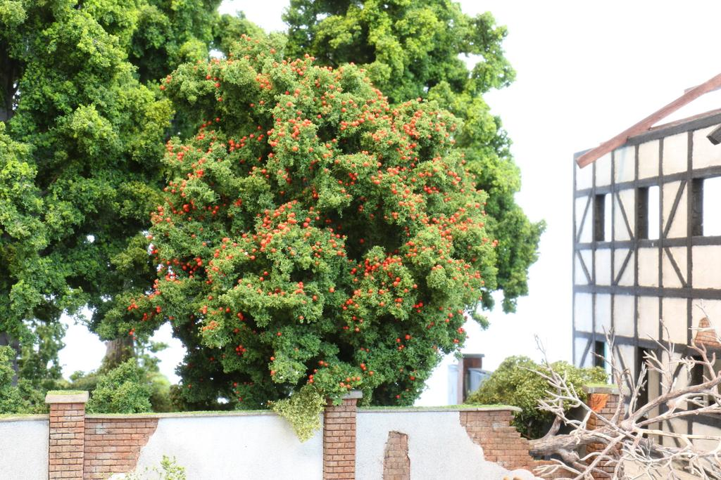 Heki Obstbäume