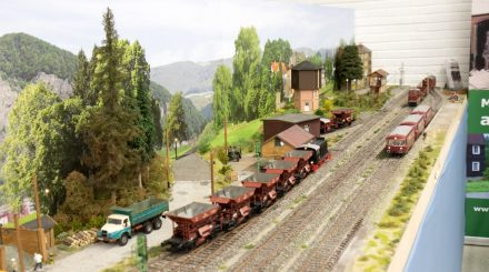 Busecker Spur Null Tage 2017