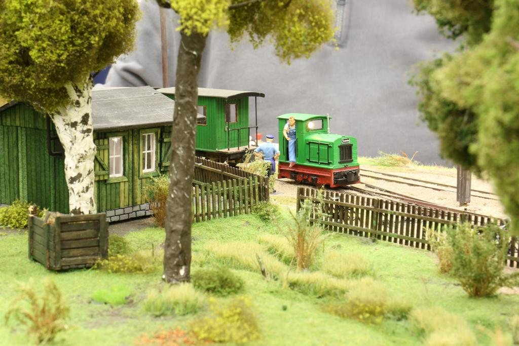 Feldbahn 4 im Wald