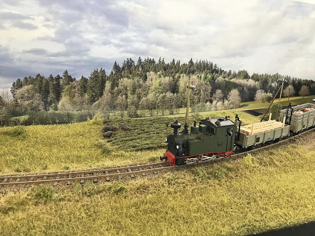 Großbahntreffen Dachau 2019 (45)
