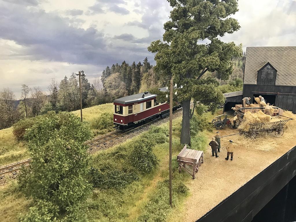 Großbahntreffen Dachau 2019 (49)