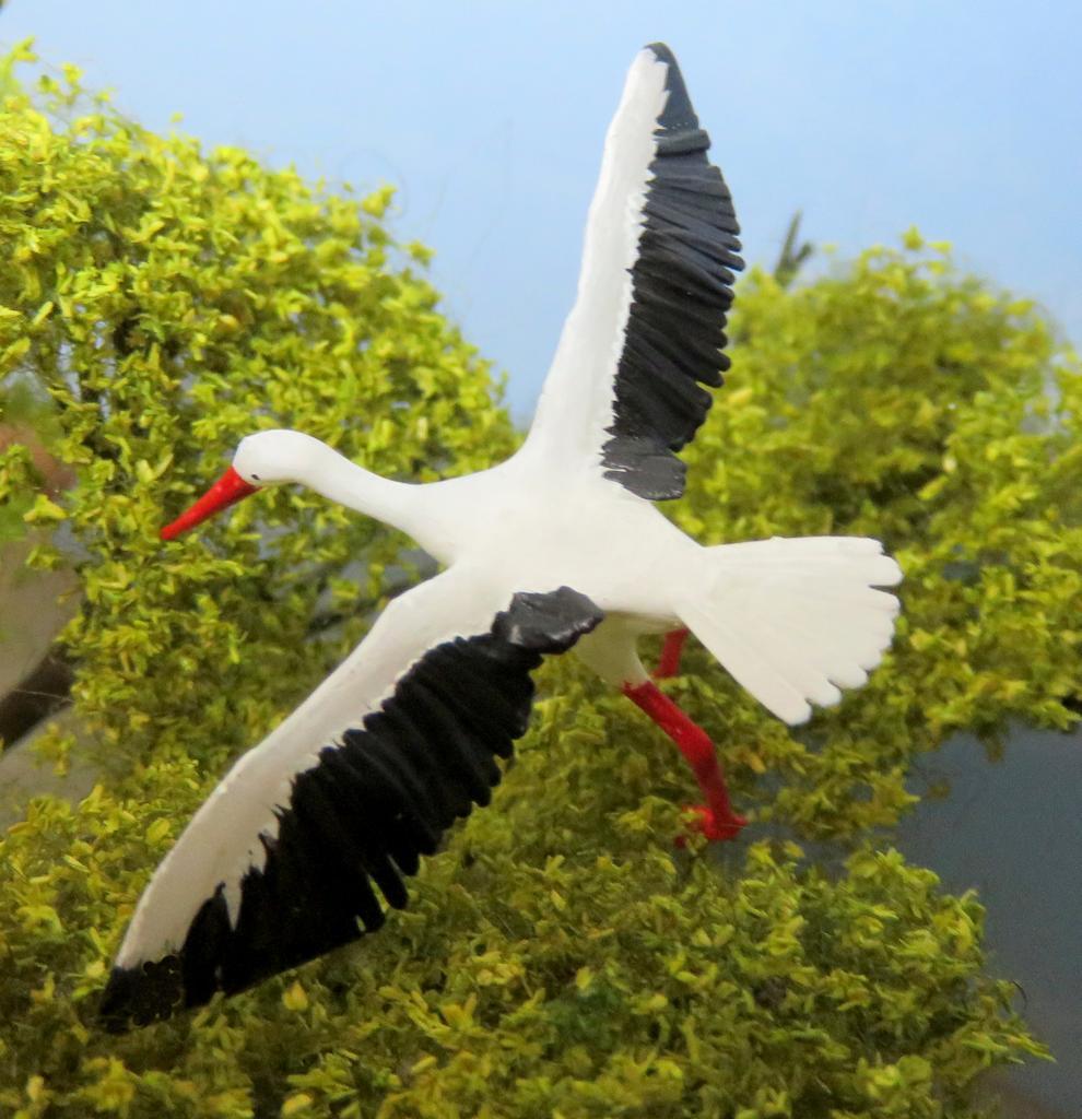 Storch mit gespreizten Flügeln